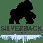 Silverback Aircon midea aircon promotion